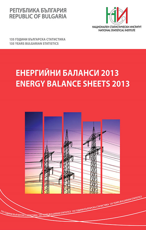 Енергийни баланси 2013